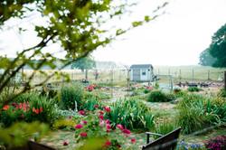gardenmay2021-1