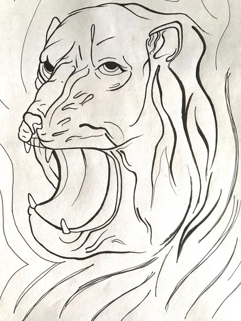 WEIRD TIGER