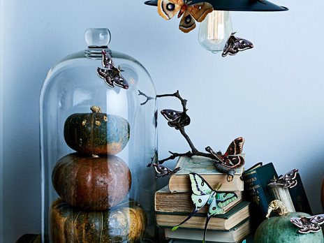 How to Decorate for Halloween... But Make it Chic