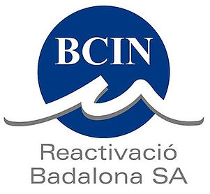 logo_BCIN.jpg