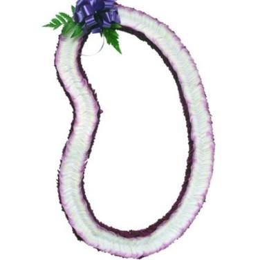 Christina orchid lei  ($65+)