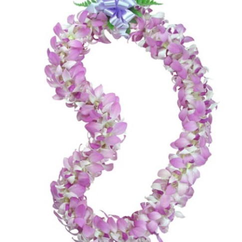 lavender orchid lei ($55+)