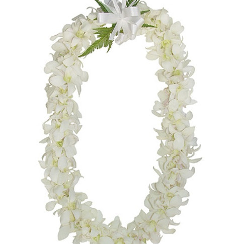 white orchid lei ($55+)