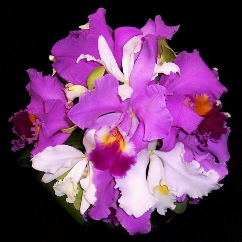 tropical orchid bouquet: lavender cattaleya orchids, white cattaleya orchids, white japhet orchids, green cymbidium orchids
