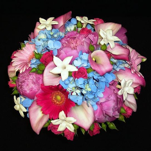 pink and blue bouquet featuring peonies, gerbera daisies, mini calla lilies, stephanotises, hydrangeas