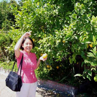 Anna avec les citrons
