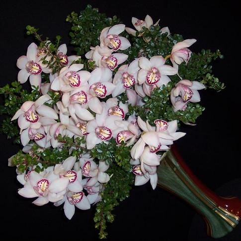 California orchids