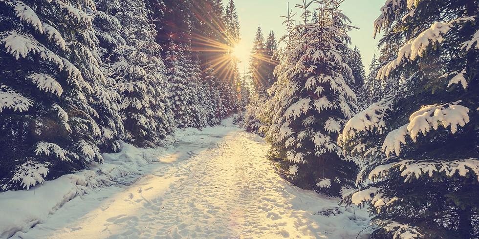 Seasons of Life: Winter