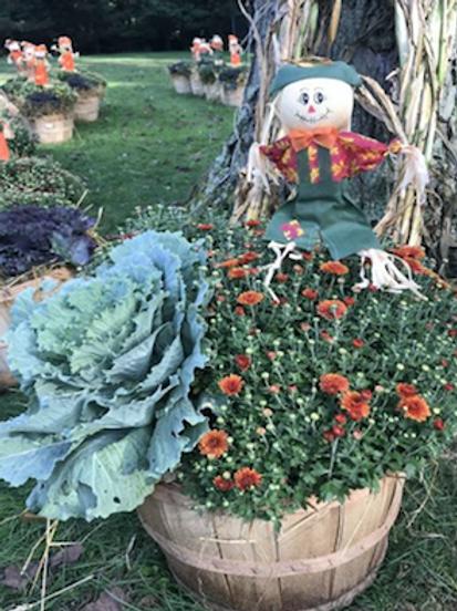 CHOICE C (Bushel with Scarecrow)