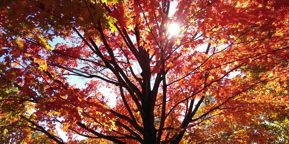 The Spirituality of Autumn