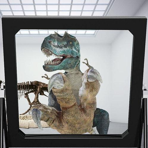 Dreamoc™ DeepFrame holographic window (while supplies last)