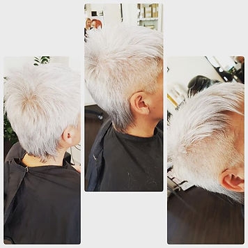 after#vokuhila#greyhair.jpg