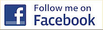 facebook follow button.jpg