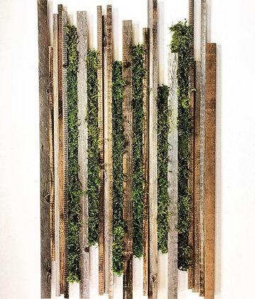 Moss Art / Wall Garden
