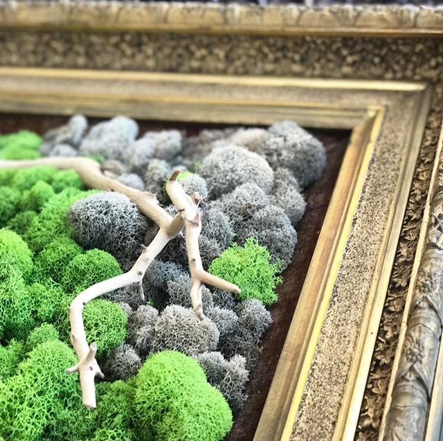 moss art #statuswood #greenart #greendesign #custommade #mossart #custommade #wallart #naturalforms