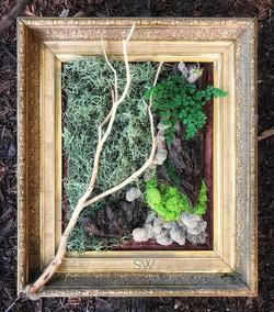 moss art #statuswood #greenart #greendesign #custommade #mossart #custommade #wallart #naturalforms