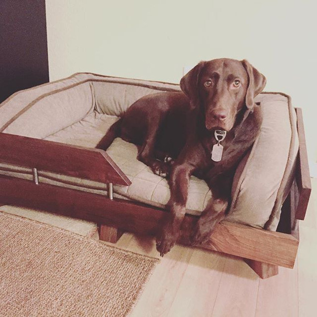 Our cutest client just got a walnut bed
