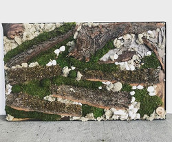 Moss art piece made by our young partner Anthony #Statuswood #mossart #wallart #greendesign #modernd
