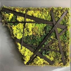Moss art panel #statuswood #mossart #reclaimedwood #greendesign #walldecor #wallpanel #wallart #mode