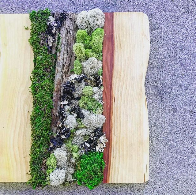 Moss art panels #statuswood #mossart #decor #interiordesign #custommadefurniture #creativedecor #mod