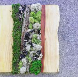 Moss art panels #statuswood #mossart #decor #interiordesign #custommadefurniture #creativedecor #mod
