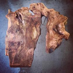 rare cottonwood shapes