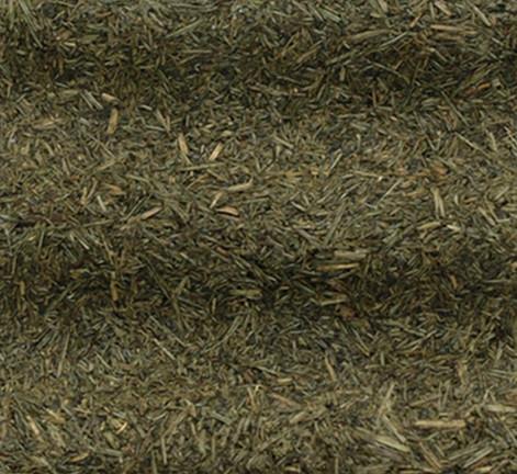 Yeşil çim 2.jpg