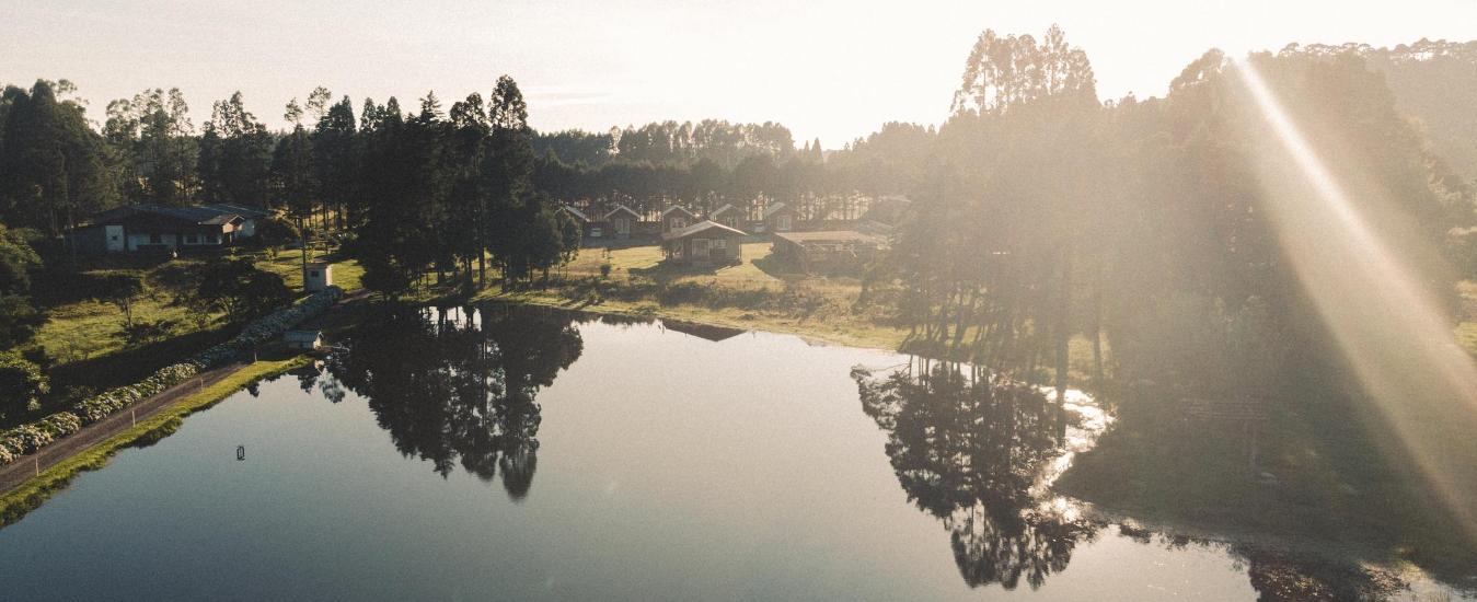 aérea lago