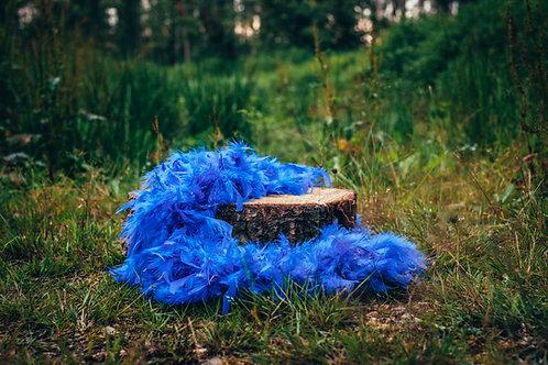 Boa královsky modré