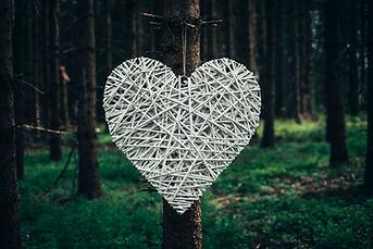 Velké srdce z proutí