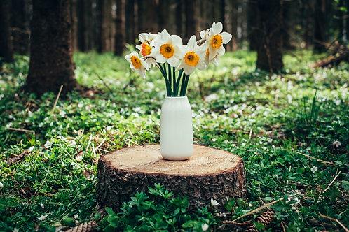 Bílá váza basic