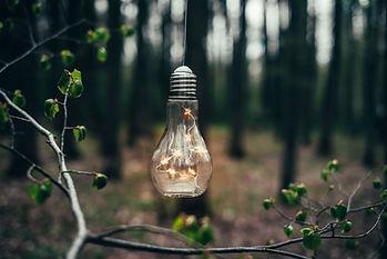Žárovka s LED světýlky uvnitř