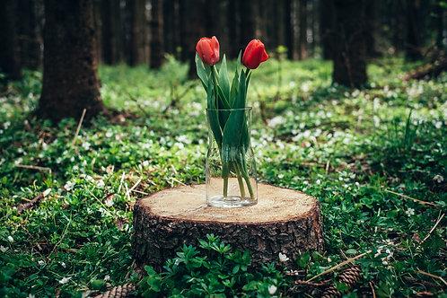 Zúžená váza