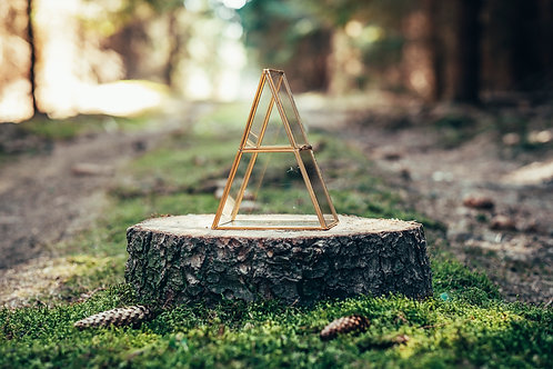 Terárium trojúhelník