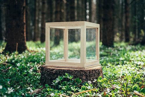 Dřevěná bedýnka se sklem