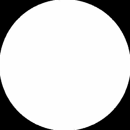 White Circle 2.png