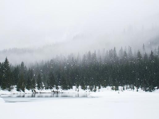 Winter - Poem