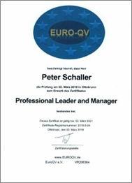 MES-Beratung | PETER SCHALLER | MES-Experte