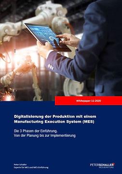 MES-Lastenheft MES-Softwareauswahl MES-Einführung