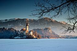 Icy Dawn - Lake Bled