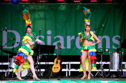 Micaël Lüssi_Carnaval de Rio_1