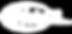 webGL_CR.png
