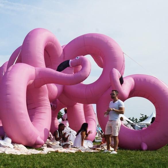 """""""flamingo torus"""""""
