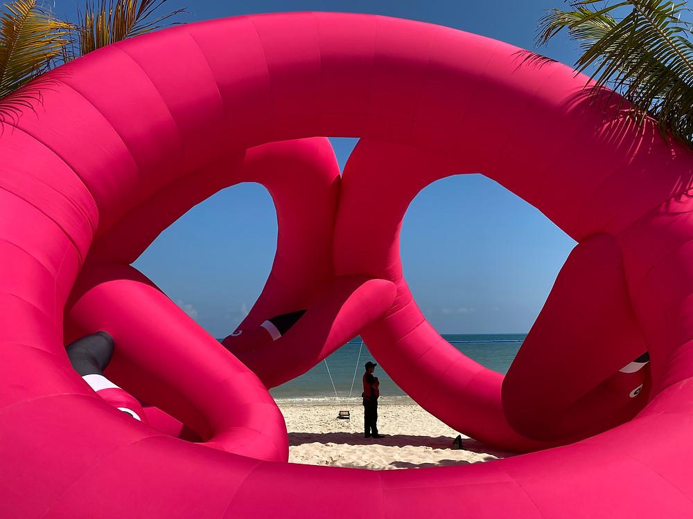 Flamingo Ring in Cancun.