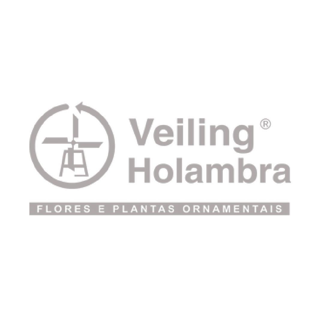 _logo_veilingh.png