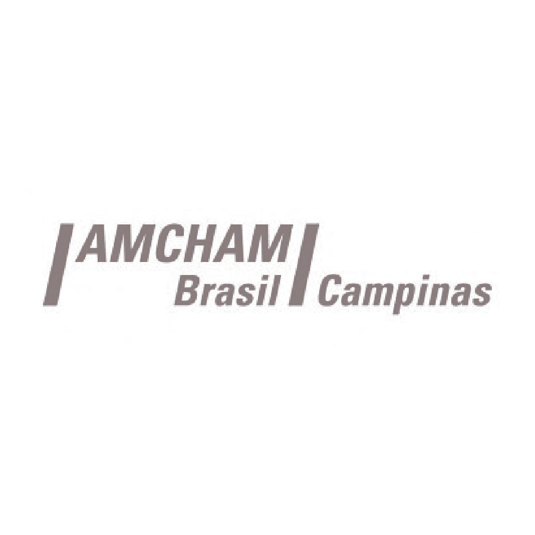 _logo_amcham.png