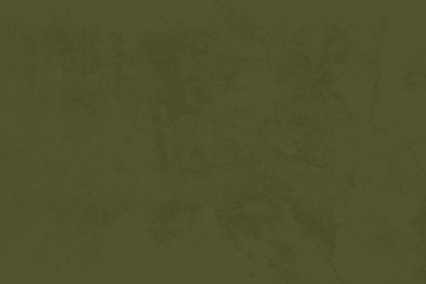 Green Background.jpg