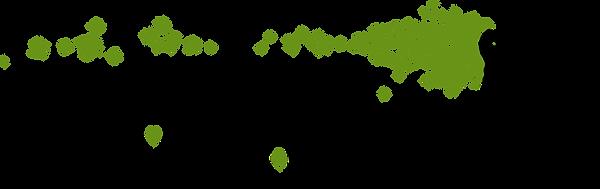 Logo Vignoble Pellerin Vedrt Moyen.png