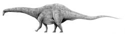 図鑑アパトサウルス