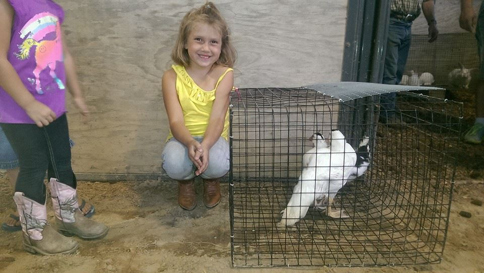 Playing with the animals